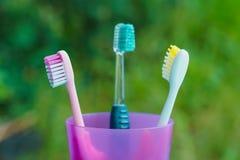 Mång- kulöra tandborstar i exponeringsglas på suddighet gör grön bakgrunder Royaltyfri Bild