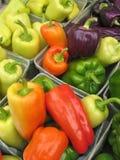 mång- peppar för kulör bondemarknad Arkivbilder