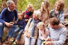 Mång--utveckling familj med tonår som utomhus tillsammans äter arkivbilder