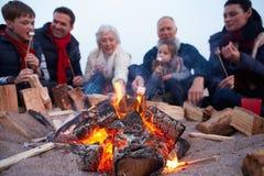 Mång- utvecklingsfamilj som har grillfesten på vinterstranden fotografering för bildbyråer