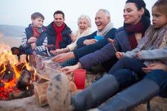 Mång- utvecklingsfamilj som har grillfesten på vinterstranden arkivbilder