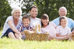 Mång- utvecklingsfamilj som tycker om picknicken i bygd royaltyfria bilder