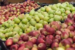 Många äpplen på hylla i lager Royaltyfri Fotografi