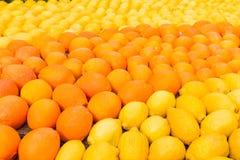 Många apelsiner och citroner under festivalen av Menton, Frankrike royaltyfri bild