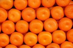 Många apelsiner som isoleras i ett ställe Royaltyfri Fotografi