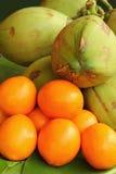 Apelsin och kokosnöt Royaltyfria Bilder