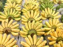 Många bananhårkam, Closeup av en packe av bananer i naturligt ljus Arkivbild