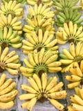 Många bananhårkam, Closeup av en packe av bananer i naturligt ljus Royaltyfria Foton