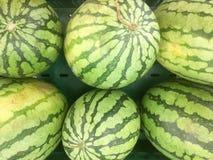 Många bevattnar melon, många stora sötsakgräsplanvattenmelon och en klippt w Royaltyfria Bilder