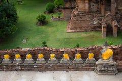 Många bild av den berömda buddha templet royaltyfria foton