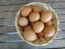 Många blir rädd ägg i korgen Royaltyfri Bild