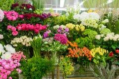 Många blommor i blomsterhandlare shoppar royaltyfria bilder