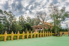 Många Buddhastatyer i perspektiv på den buddistiska templet Arkivbilder