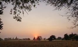 Många buddistiska tempel i Bagan, Myanmar Arkivbild