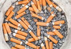 Många cigarettstumpar i plast- kruka Arkivfoton