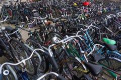 Många cyklar på cykelparkeringen Arkivfoto