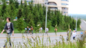Många cyklister och fotgängare går uppåt- och neråt en kulle Spikelets av gräs som skakar från vind på framdel lager videofilmer