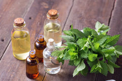 Många flaskor med nödvändig arom oljer med mintkaramellen på trälodisar arkivfoton
