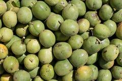 Många gör grön grekiska valnötter gröna muttrar i en ask Textur av grön grekisk tokig bakgrund Royaltyfri Bild