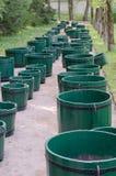 Många gör grön trätrummor arkivfoto