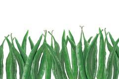 Många gör grön varma kyliga peppar som isoleras på vit Arkivbild