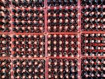 Många gör till kok eller dencola flaskan i plast- spjällådor för levererat till kunder fotografering för bildbyråer