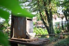 Många gamla gummihjul i lagret, stänger sig upp arkivfoton