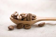 Många grillade kaffebönor i skeden Arkivbilder
