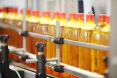 Många gula plast- flaskor med nytt öl går på transportör Royaltyfri Fotografi