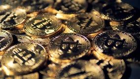 Många guld- bitcoins i en detaljerad nära sikt lager videofilmer