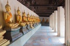 Många guld- buddha staty längs gångbanan royaltyfria foton