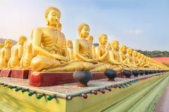Många guld- buddha statyer som sitter i rad på offentlig tempelnakornnayok Thailand arkivbilder