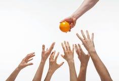 Många händer önskar att få apelsinen royaltyfria foton