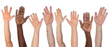 Många händer som isoleras upp på vit Arkivbild