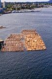 Många journaler som svävar i hamn Royaltyfri Foto