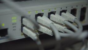 Många kablar av modern servermaskinvara stock video