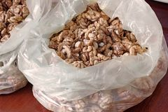 många kernels valnöt skalade muttrar arkivbilder