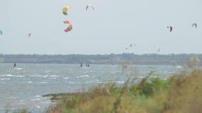 Många kitesurfers Idrottsman nen som gör drakebränning på limans Gräs stock video
