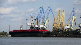 Många kranar i de port transshipped kolen av skytteln arkivfilmer