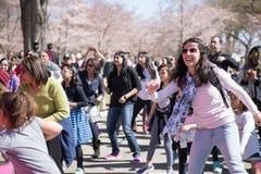 Många kvinnor dansar på festivaler royaltyfri foto