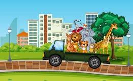 Många löst djur på lastbilen stock illustrationer