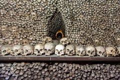 Många mänskliga skallar och ben royaltyfri bild