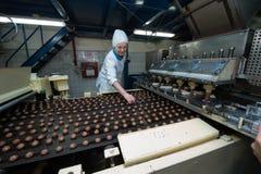 Många massiv produktion för söt kakamatfabrik Arkivfoton