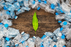 Många mer ekologibilder i min portfölj Gräsplansidor på en träbakgrund runt om de genomskinliga plast-flaskorna Problemet av ekol Fotografering för Bildbyråer