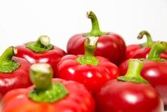Många mogna röda peppar på över vit Arkivfoton