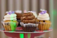 många muffiner Arkivfoto