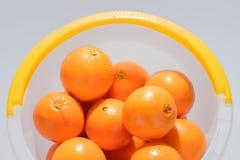 Många nya apelsiner i hinken Royaltyfri Fotografi