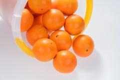 Många nya apelsiner i hinken Royaltyfria Bilder