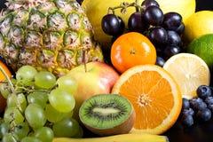Många olika exotiska frukter Royaltyfri Bild