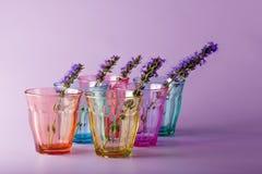 Många olika exponeringsglas som symboliserar beslutsamhet Royaltyfri Fotografi